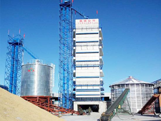 1000吨顺逆流水稻BOB,产量达到2500吨